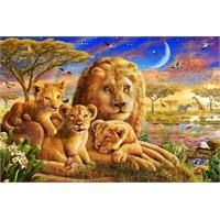 Castorland 500 Parça Puzzle Dawn Pride