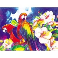 Çiçekler Ve Papağanlar (1000 Parça)