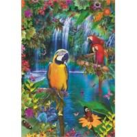 Educa 500 Parça Puzzle Bird Tropical Land