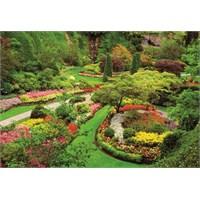 Educa 1000 Parça Puzzle Butchart Gardens, Canada