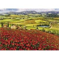 Schmidt 1000 Parçalık Puzzle Poppies İn Bloom