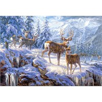 Castorland 1000 Parça Puzzle Winter Mountain Light