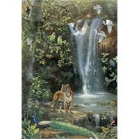Enchanted Dream (1500 parça)
