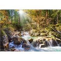 Castorland 2000 Parça Puzzle The Forest Stream