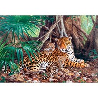 Castorland 3000 Parçalık Puzzle Jaguars İn The Jungle
