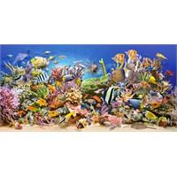 Castorland Underwater Life 4000 Parça Balıklar