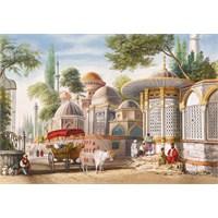 Castorland 1000 Parça Puzzle