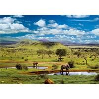 Educa 500 Parça Tsavo National Park, Kenya
