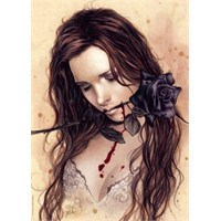 Heye 1000 Parça Puzzle Dark Rose
