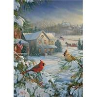 Ravensburger Kış Kuşları 1000 Parça