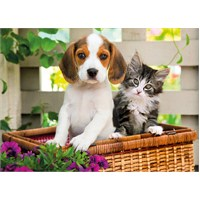 Clementoni 1000 Parça Puzzle The Dog and the Cat
