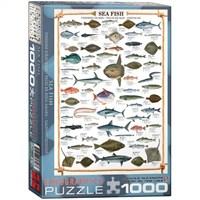 Eurographics 1000 Parça Deniz Balıkları Puzzle