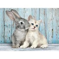 Clementoni Kedi Ve Tavşan - 500 Parça Puzzle