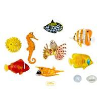 Coral Fish (Balıklar) 3D Parçalı Puzzle