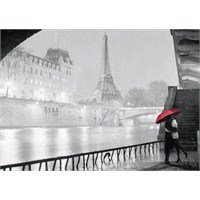 Ravensburger 1000 Parça Puzzle Siyah Beyaz Paris