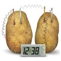 Potato Clock Elektriğini Patatesten Üreten Dijital Saat