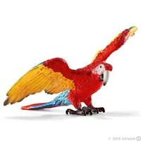 Amerikan Papağanı