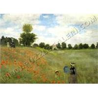 Gelincikler, Monet (1000 Parça)
