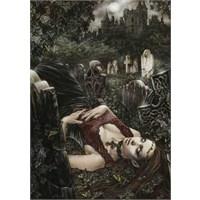Midnight, Victoria Frances (1000 Parça)