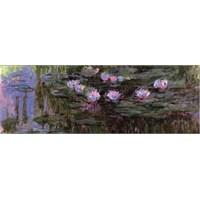 Nympheas, 1916-1919 Monet (1000 Parça, Panaroma)