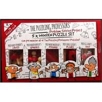 Professor 5X Wooden Puzzle Set
