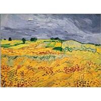 The Fields,Van Gogh(1000Parça)