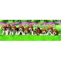 Dogs (150 Parça, Panorama)