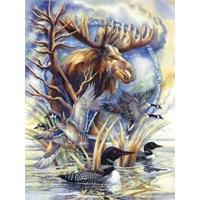 On Golden Pond (750 Parça Puzzle)