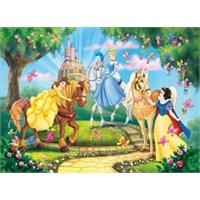 Princess And Horses (24 Parça Maxi)