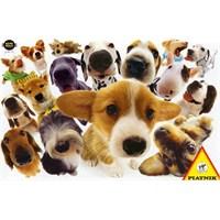 Piatnik Puzzle Hanadeka Köpekler (1000 Parça)