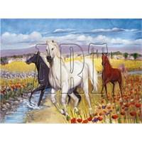 Art Puzzle Atlar (1000 Parça)