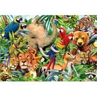 Educa Puzzle Animal World (500 Parça)
