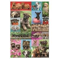 Educa Puzzle Puppy Collage (1000 Parça)