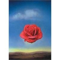 Ricordi Puzzle Rose Meditative, Dali (1500 Parça)
