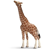 Schleich Yemek Yiyen Erkek Zürafa