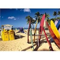 Jumbo Puzzle Honolulu, Waikiki Beach (1000 Parça)