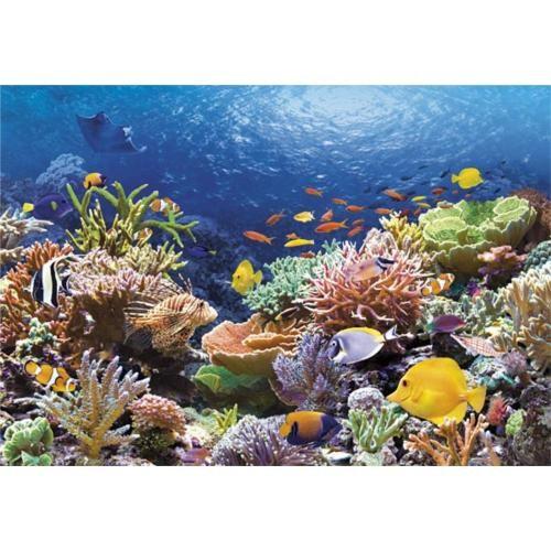 Castorland 1000 Parça Puzzle Coral Reef Fishes