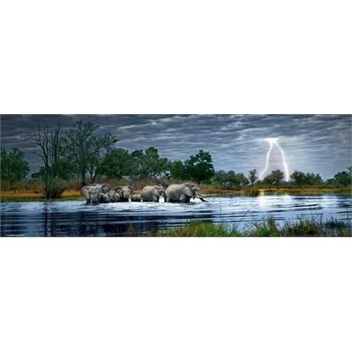 Heye Herd Of Elephants -Humboldt (2000 Parça - Panorama)