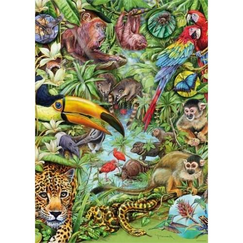Heye Rainforest (1000 Parça)