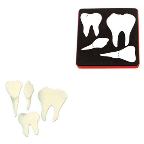 Sizzix Dişler Kalıbı - 1A10823