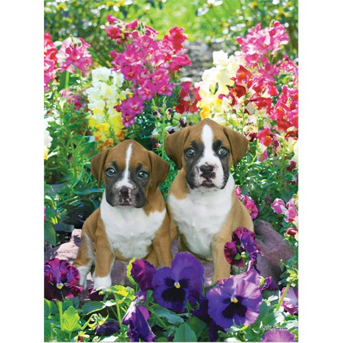 Masterpieces 500 Parça Puzzle Pansies & Puppies