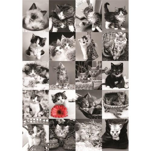 The Cats (1500 parça)