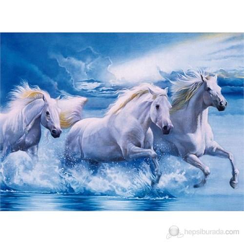 Majestic Stallion (1000 parça)