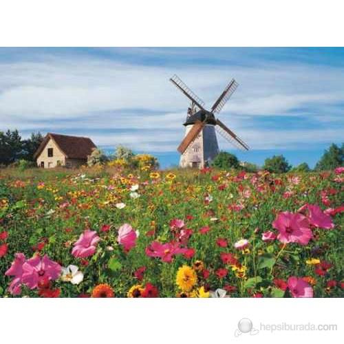 Island Of Usedom (1000 parça)