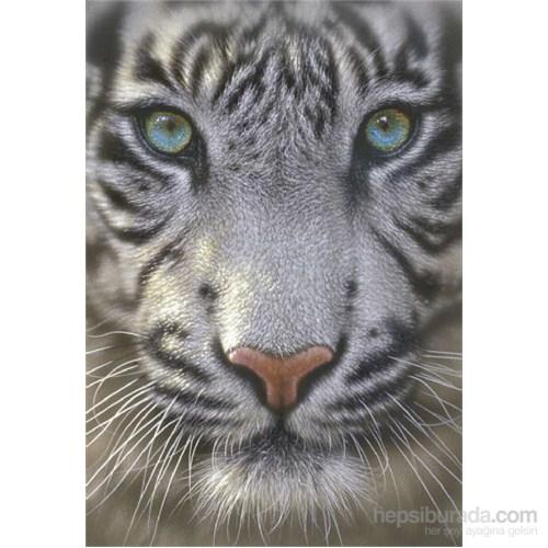 Educa 500 Parça White Tiger Puzzle