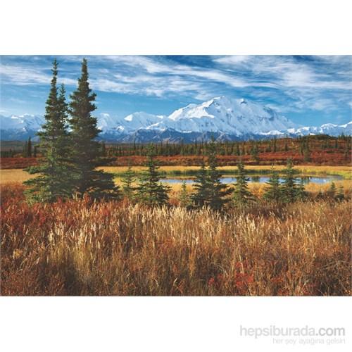 Educa 1500 Parça Denali National Park USA Puzzle