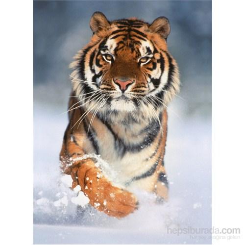 Clementoni 1000 Parça Puzzle Tiger