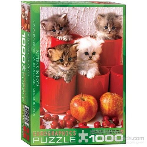 1000 Parça Kedi Yavruları Puzzle Eurographics