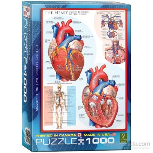 Eurographics Puzzle 1000 Parça İnsan Vücudu (Kalp)