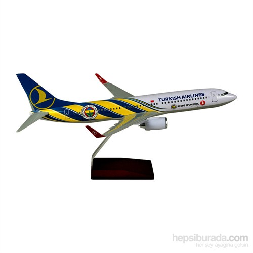 Tk Collection B737/800 1/100 Fb Model Uçak